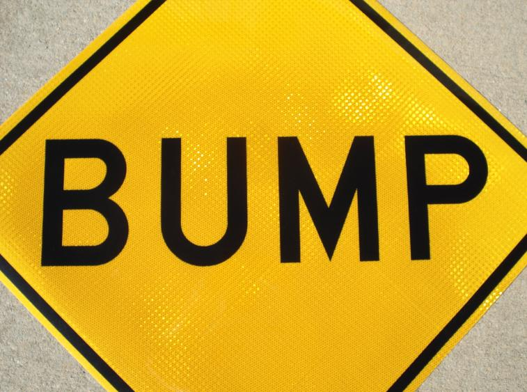 http://www.ricesigns.com/real_pictures/bump_sign_W8-1_large.jpg