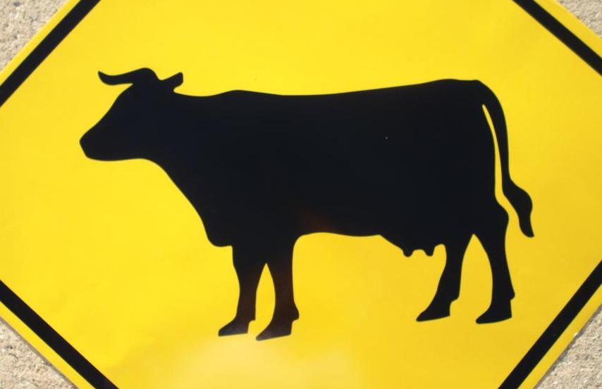 Up-close picture of our Cattle Crossing road sign